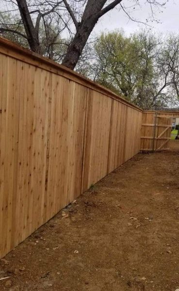 privacy fence in backayrd