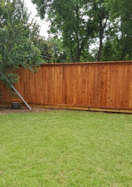 privacy fence in back yard