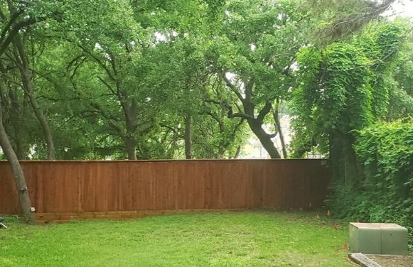 privacy fence surrounded by nature