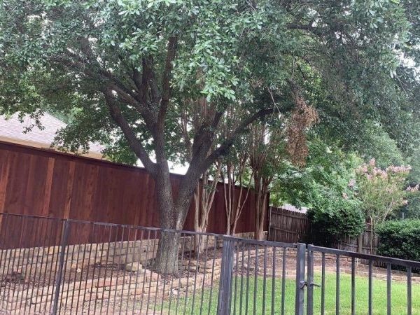 stained privacy fence on stone wall with metal gate