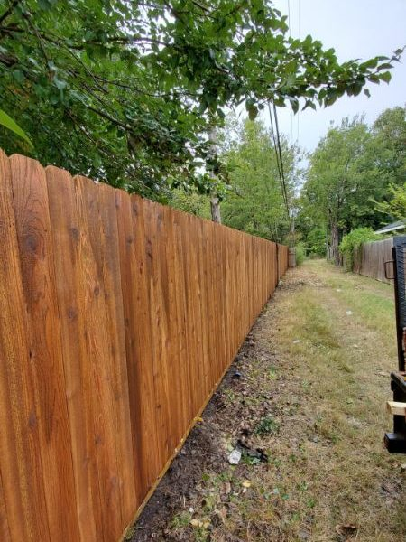 stained wooden fencing