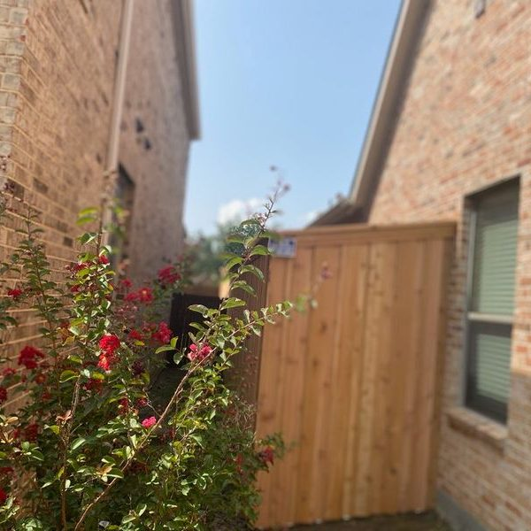 flowers in front of a residential wooden fence